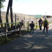 Дети в старооскольском зоопарке